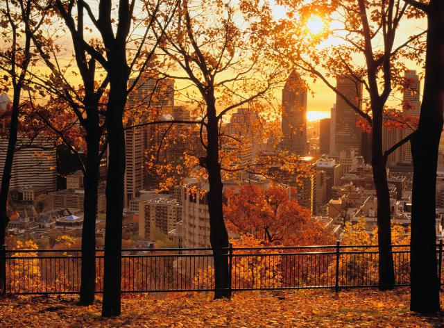 fall-foliage-blog